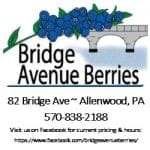 Bridge Avenue Berries